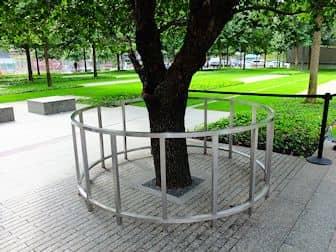 9/11 Memorial am Ground Zero - Survivor Tree