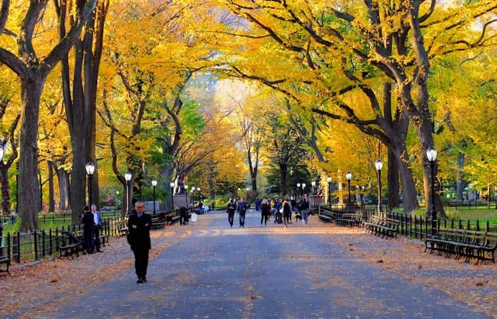 Central Park in New York - Herbst