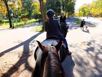 Central Park in New York - Reiten