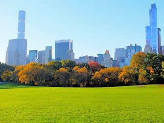 Central Park in New York - Sheep Meadow im Herbst