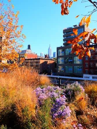 High Line Park in New York - Aussicht