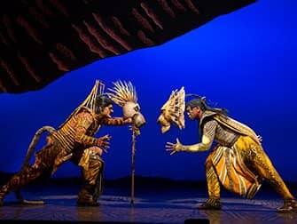 The Lion King am Broadway Tickets - Kampf