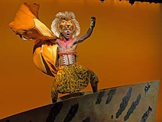 The Lion King am Broadway Tickets - Simba
