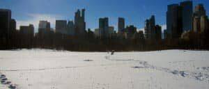 Durchschnittstemperaturen in New York