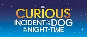 The Curious Incident of the Dog in the Night-Time am Broadway