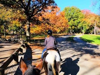 Reiten im Central Park - Reitweg