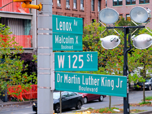 Martin Luther King Jr. Day in New York
