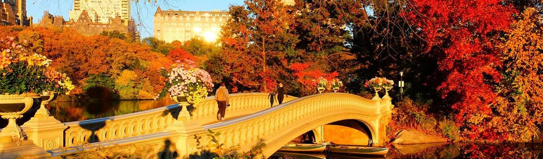 Herbstfarben im Central Park